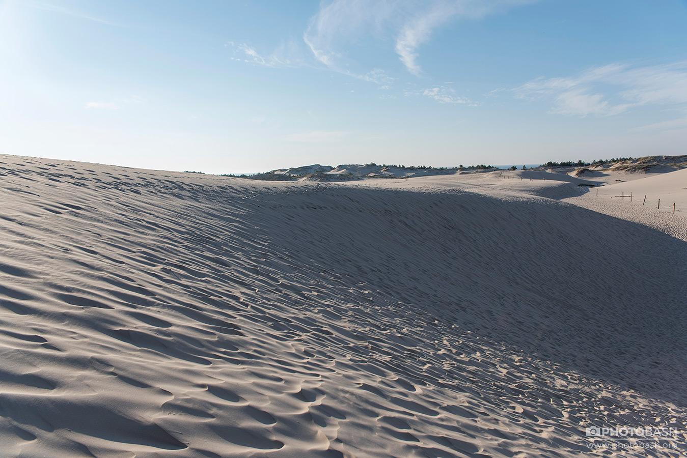 تصاویر رفرنس از تپه های ساحلی