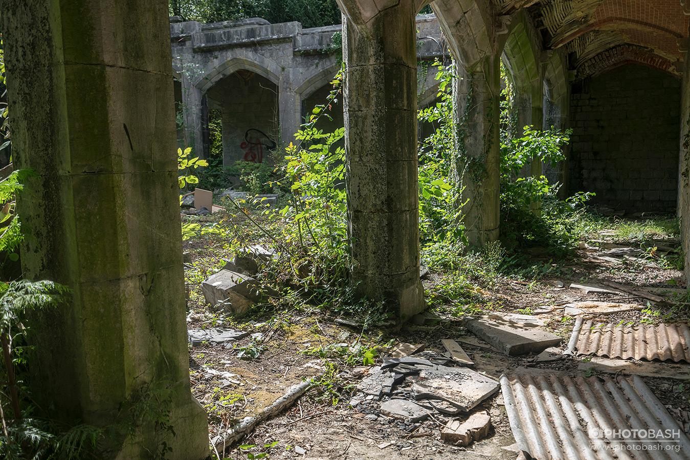 تصاویر رفرنس از قلعه پوشیده از گیاه
