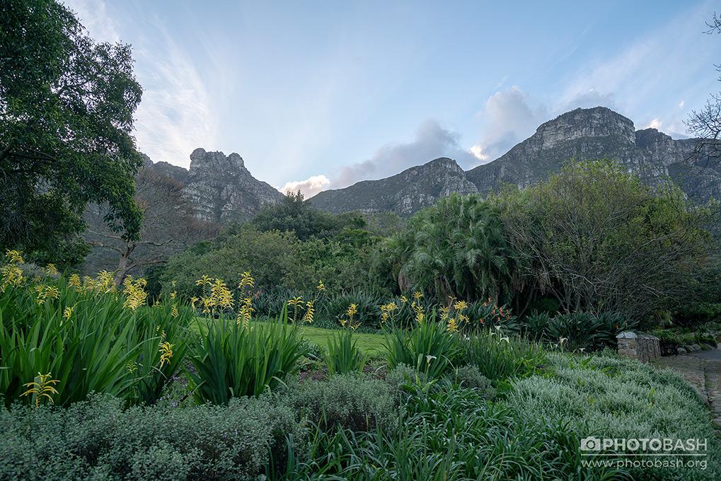 تصاویر رفرنس از باغ ماقبل تاریخ