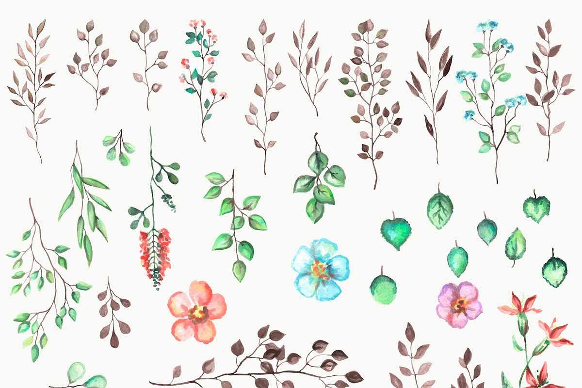 وکتور ست گل و بوته آبرنگی